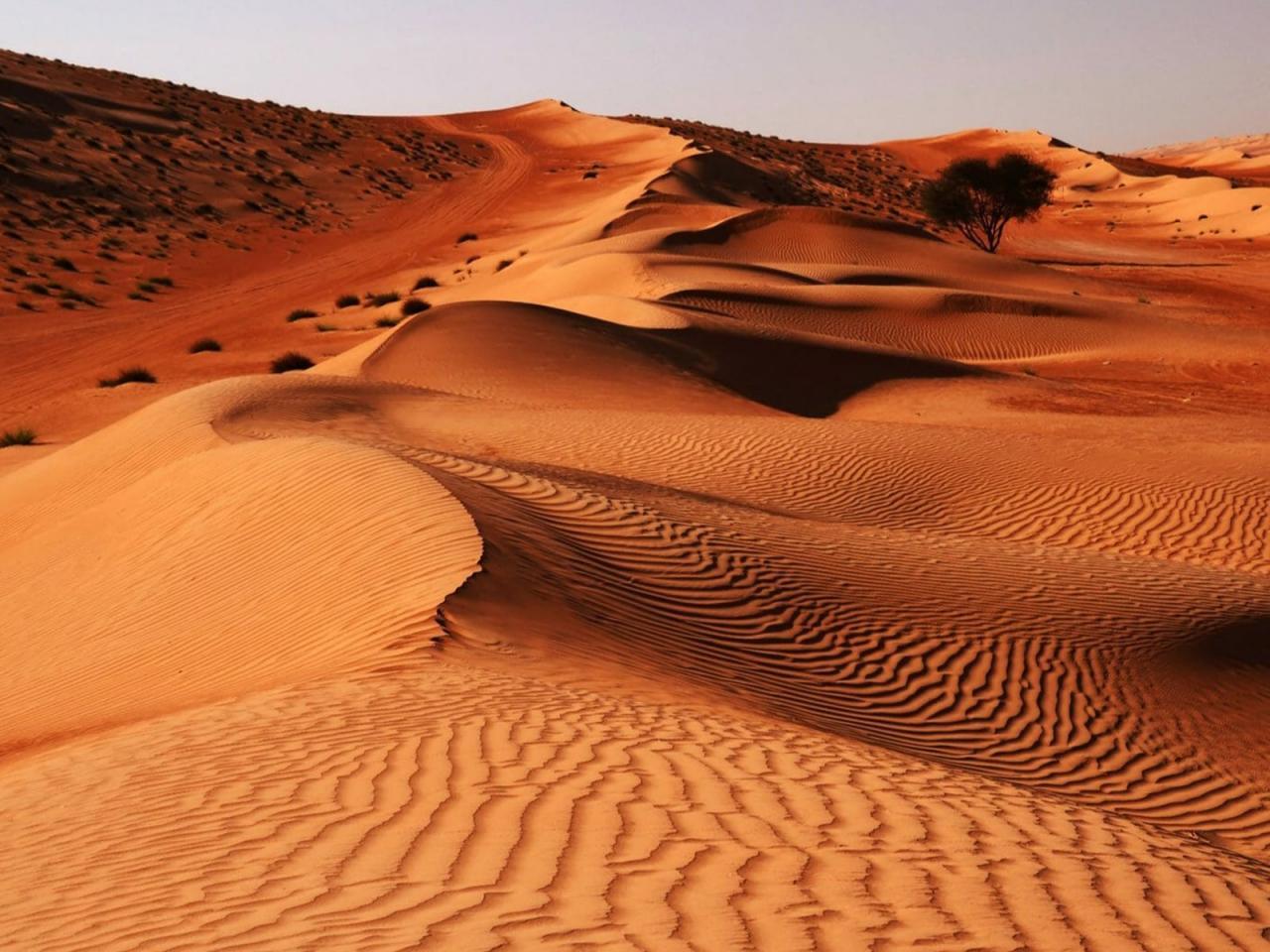 کویر شنی وهیبه، واقع در مركز کشور عمان
